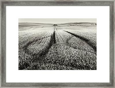 In The Moravian Fields Framed Print by Jenny Rainbow