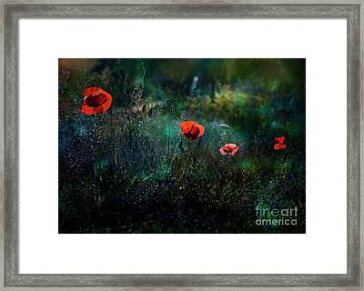 In The Morning Framed Print by Agnieszka Mlicka