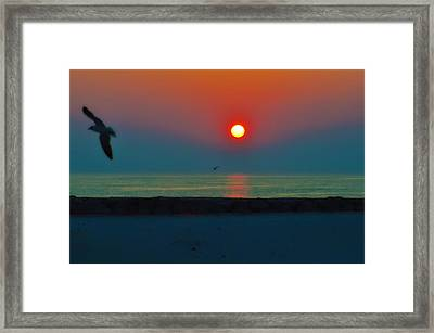 In The Morning Sun Framed Print by Bill Cannon