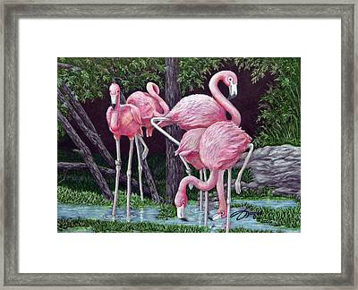 In The Pink Framed Print by Beverly Fuqua