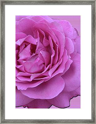 In The Pink Framed Print by Larry Bishop