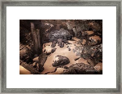 In The Place Of Na'ashjii Asdzaa Framed Print by William Fields