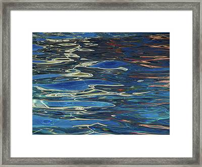 In The Pool Framed Print by Evelyn Tambour
