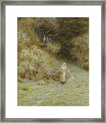 In The Primrose Wood Framed Print by Helen Allingham