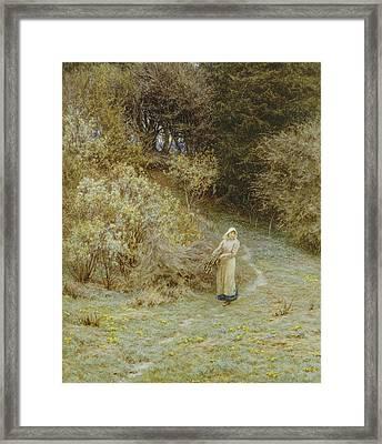 In The Primrose Wood Framed Print by Helen Allingham
