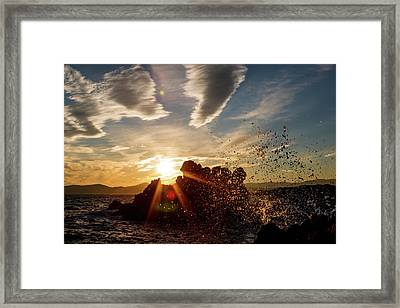 In The Right Spot Framed Print