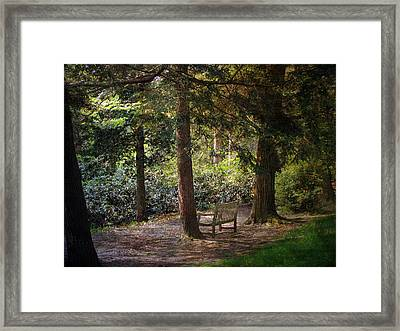 Framed Print featuring the photograph In The Shade by John Rivera