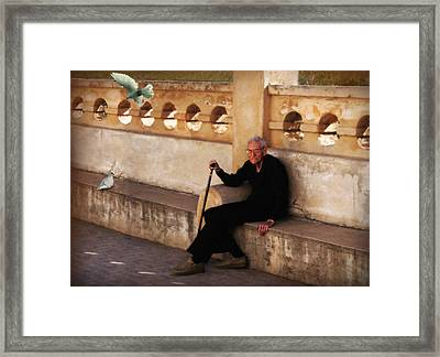 In The Shade Of The White Dove Framed Print