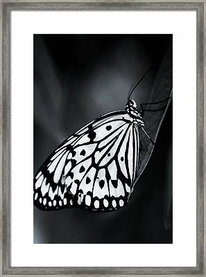 In The Shadow Framed Print by The Art Of Marilyn Ridoutt-Greene