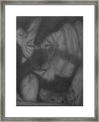 In The Shadows Framed Print by Jose Cabral