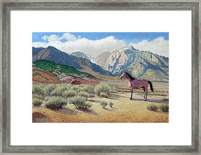 In The Sierras Framed Print by Paul Krapf