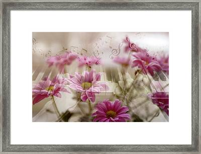 In The Silence Of The Secret Night Framed Print