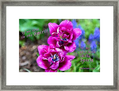 In The Spirit Framed Print by Terry Wallace
