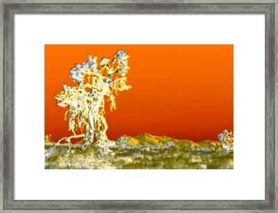 In The Spirit World Framed Print