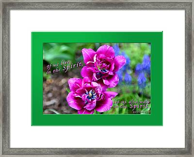 In The Spirit1 Framed Print by Terry Wallace