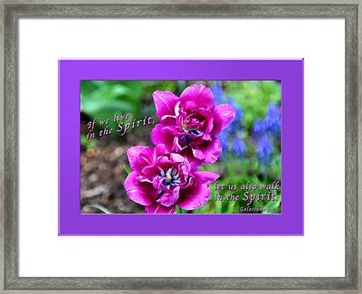 In The Spirit2 Framed Print by Terry Wallace