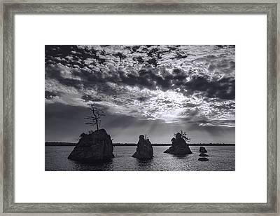 In The Spotlight Framed Print by Dan Mihai