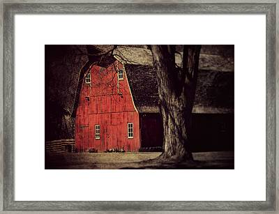 In The Spotlight Framed Print by Julie Hamilton