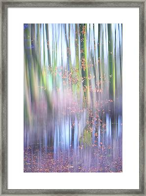 In The Spring Woods. Impressionism Framed Print