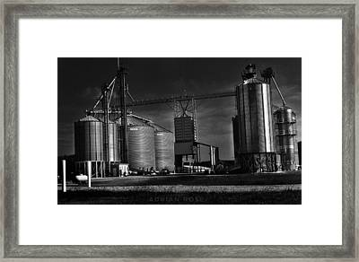 In The Still- Black And White Framed Print