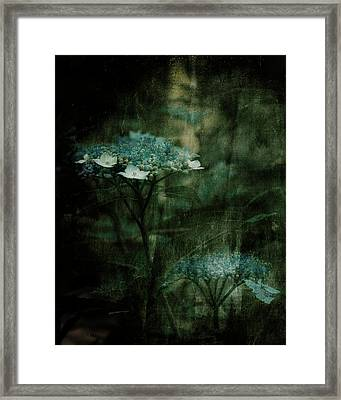 In The Still Of The Night Framed Print by Bonnie Bruno