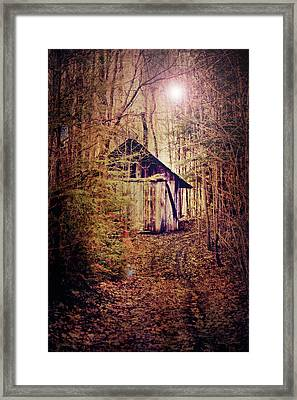 In The Sugar Bush Framed Print by Nancy  Coelho