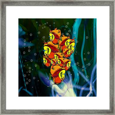 In The Tank - Clumpgrouperous  Framed Print by D Daulby