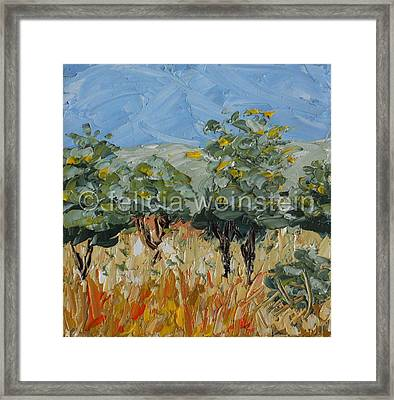 In The Valley 1 Framed Print