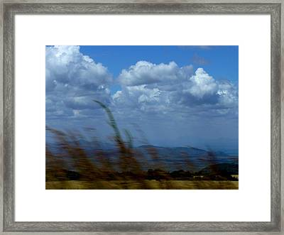In The Wind Framed Print by Carole Guillen