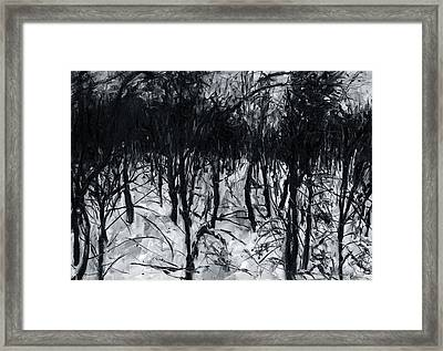 In The Woods 7 Framed Print