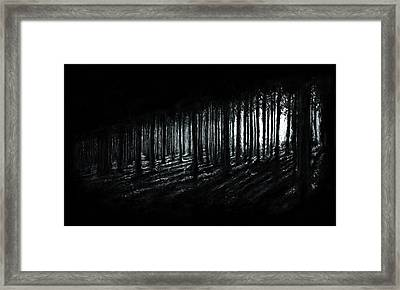 In The Woods Framed Print by Christian Klute