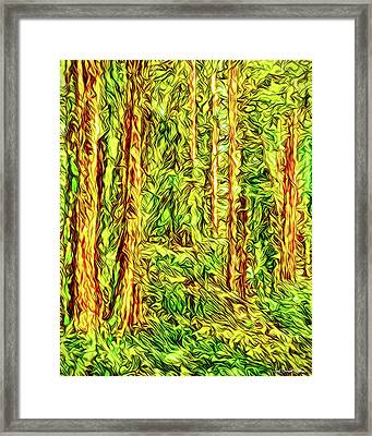 Framed Print featuring the digital art In The Woods - Forest Trees Vashon Island Washington by Joel Bruce Wallach