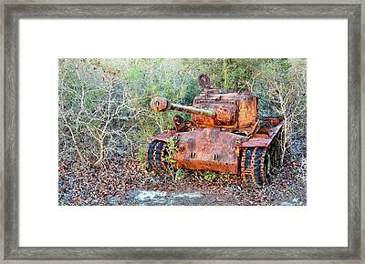 In The Woods Framed Print by JC Findley