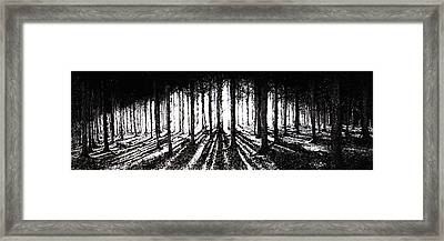 In The Woods 2 Framed Print