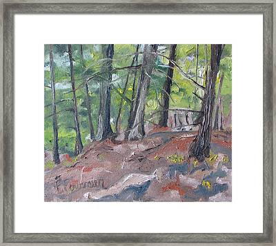 In The Woods No2 Framed Print by Francois Fournier