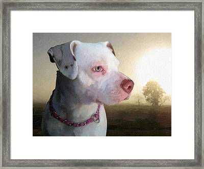 In Thought Framed Print by Michael Tompsett