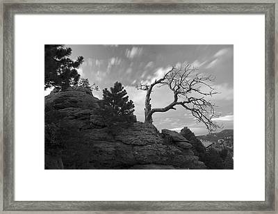 In Time There Is Motion Black And White  Framed Print by James Steele