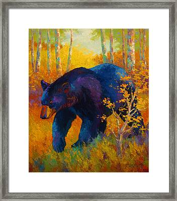 In To Spring - Black Bear Framed Print by Marion Rose