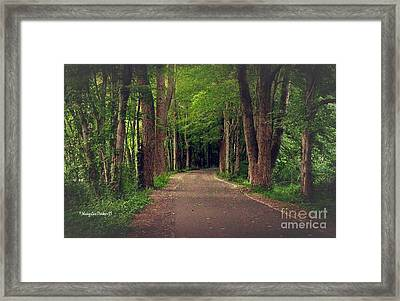 In To The   Deep Dark Woods  Framed Print by MaryLee Parker