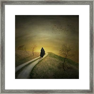In To The Light Framed Print by Ian Barber