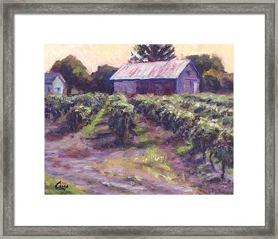 In Wine Country Framed Print by Michael Camp