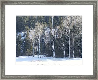 In Winter Framed Print by Susan Pedrini