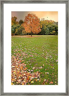 Tell Him Please Framed Print by Diana Angstadt