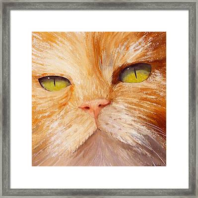 In Your Face Framed Print by Ally Benbrook