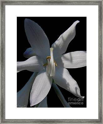 Inappropriate Gesture Framed Print