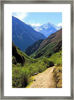 Inca Trail And Mt. Veronica Framed Print by Alan Lenk