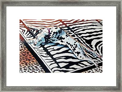 Incognito Framed Print by Gail Zavala