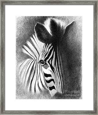 Incognito Framed Print by Phyllis Howard