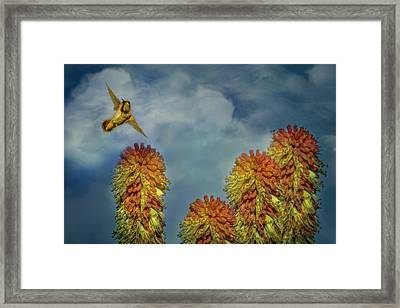Incoming Framed Print by Marci Potts