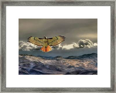 Incoming Storm Framed Print by Donna Kennedy